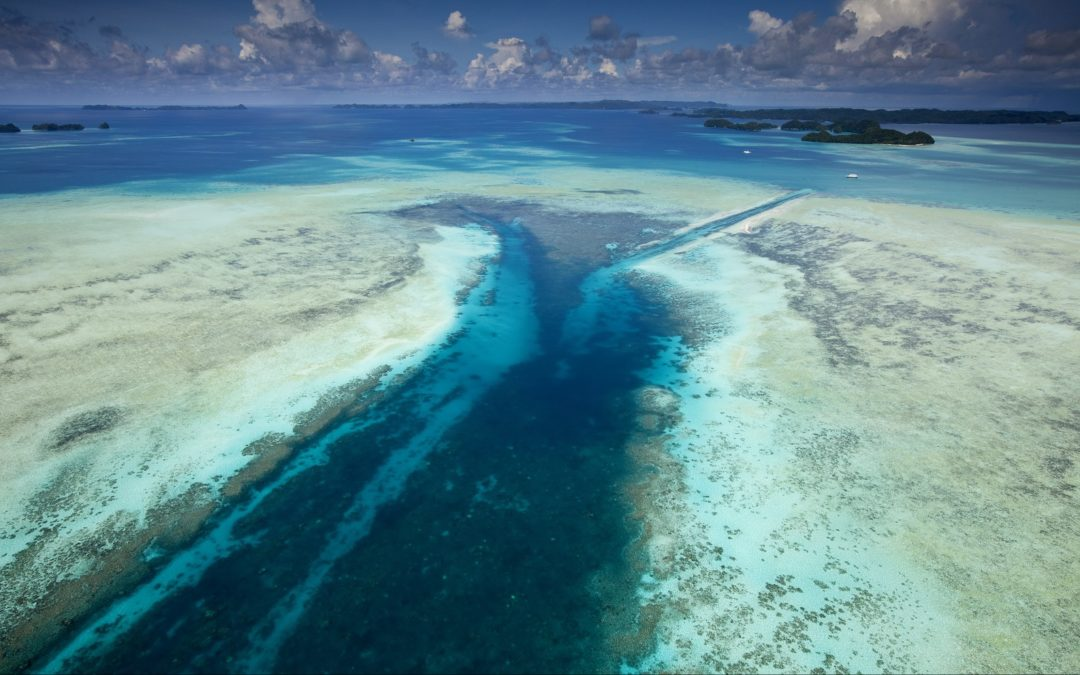 Viaggi per subacquei Palau - Micronesia un angolo di paradiso naturale